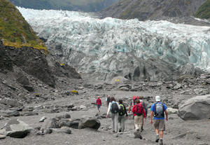 Fox glacier- Circuit Nouvelle Zélande