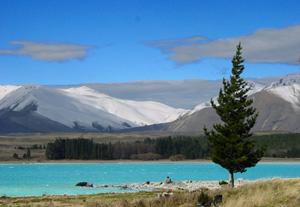 Lac Tekapo- Circuit Nouvelle Zélande