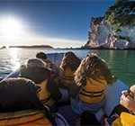 NZ_activite_hahei_explorer