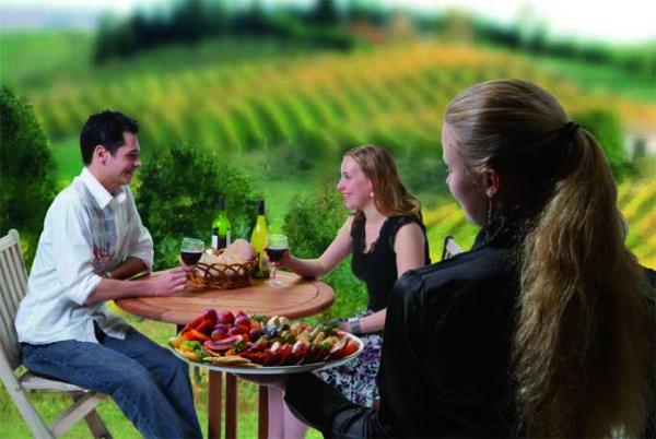 Séjour viticulture
