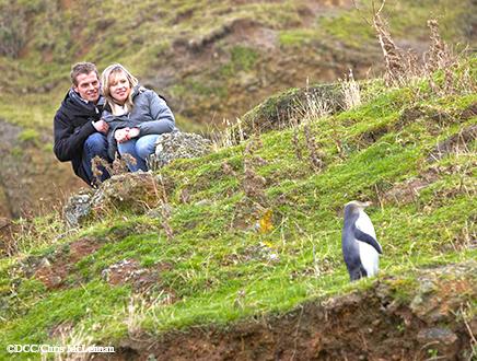 """Voyage de noces Nouvelle Zélande """"100% Nature"""" 23 jours"""