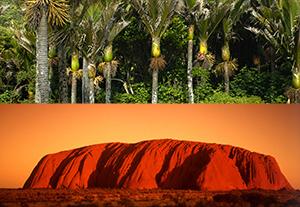 Combiné 39 jours Nouvelle-Zélande / Australie