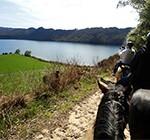 NZ_activite_horse_trekking_rotorua