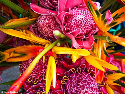 Séjour Vanuatu guidé 8 jours – Culture et nature
