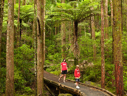 Circuit Nouvelle Zélande – 18 jours Kiwi Découverte
