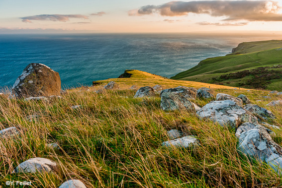 One-day landscape photography workshop around Dunedin