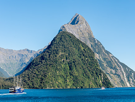 Privatised Guided Tours of New Zealand